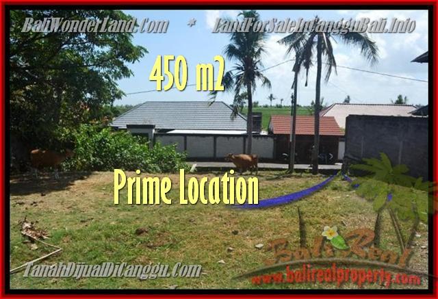 Beautiful PROPERTY LAND SALE IN Canggu Pererenan BALI TJCG153