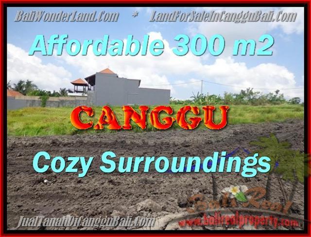 Exotic Canggu Pererenan LAND FOR SALE TJCG157