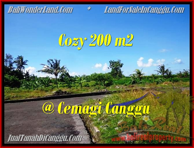 FOR SALE Magnificent PROPERTY 200 m2 LAND IN CANGGU TJCG171