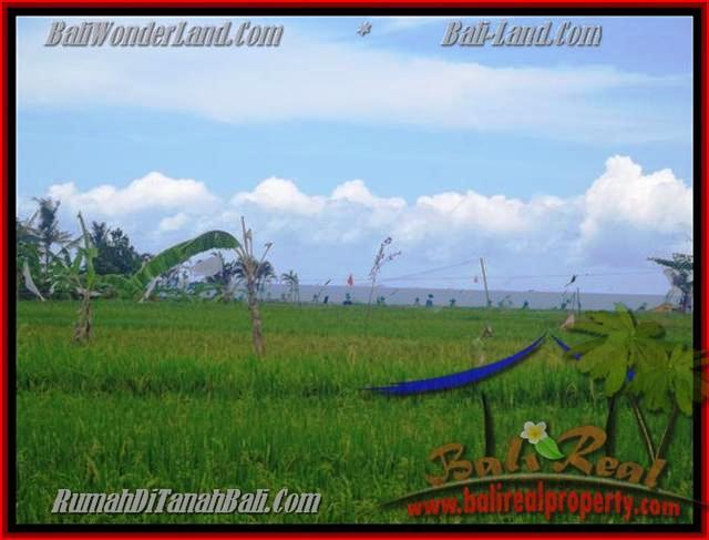 FOR SALE Affordable 2.000 m2 LAND IN Canggu Cemagi BALI TJCG140