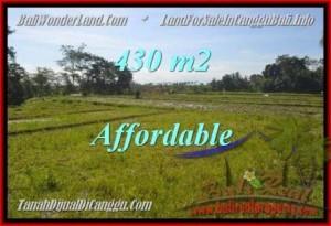 Exotic 430 m2 LAND SALE IN Canggu Pererenan BALI TJCG183