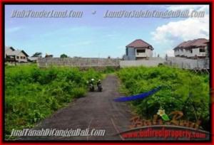 Magnificent PROPERTY 335 m2 LAND FOR SALE IN CANGGU BALI TJCG142