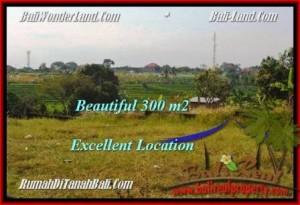 FOR SALE Magnificent 300 m2 LAND IN Canggu Brawa BALI TJCG185