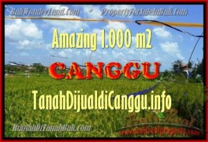 Affordable 1.000 m2 LAND IN CANGGU FOR SALE TJCG154