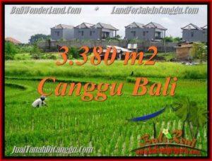 Magnificent PROPERTY 3,380 m2 LAND FOR SALE IN Canggu Echo beach TJCG199