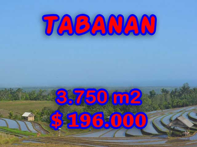 LAND IN TABANAN BALI FOR SALE