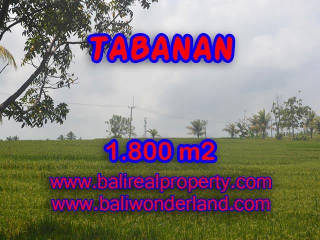 Land for sale in Tabanan Bali, Great view in SOKA TABANAN – TJTB083