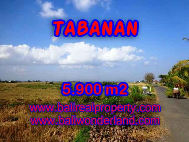 Land in Tabanan Bali for sale, Outstanding view in Tabanan selemadeg – TJTB131