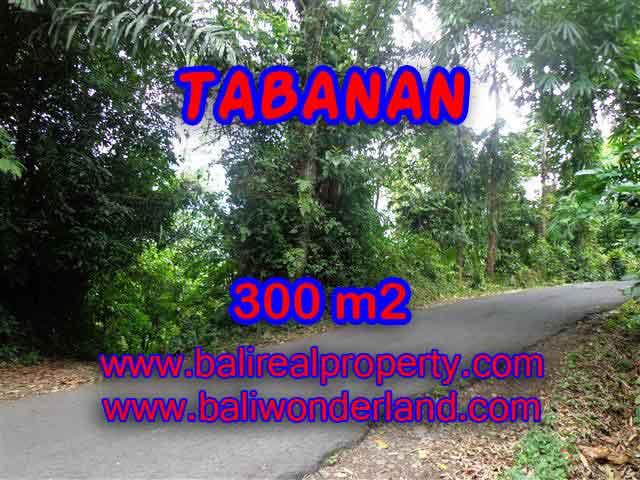 Magnificent Property in Bali for sale, land in Tabanan Bali for sale – TJTB116