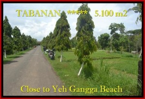 Exotic 5.100 m2 LAND FOR SALE IN TABANAN BALI TJTB186