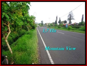 Beautiful PROPERTY Tabanan Bedugul 17,000 m2 LAND FOR SALE TJTB191
