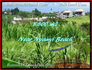 Exotic PROPERTY 8,500 m2 LAND FOR SALE IN Tabanan Tanah Lot TJTB198