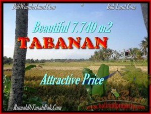 Beautiful LAND FOR SALE IN TABANAN TJTB173