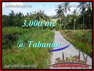 Affordable PROPERTY 3,000 m2 LAND IN TABANAN BALI FOR SALE TJTB205