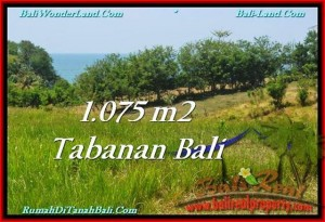 Beautiful PROPERTY 1,075 m2 LAND FOR SALE IN Tabanan Selemadeg TJTB230