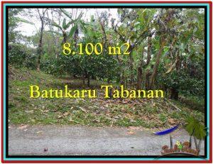 8.100 m2 LAND IN TABANAN BALI FOR SALE TJTB212