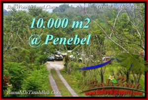FOR SALE Magnificent 10,000 m2 LAND IN  TABANAN BALI TJTB214