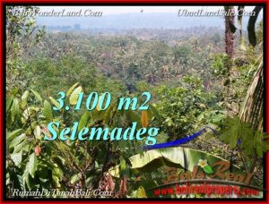 Exotic LAND FOR SALE IN TABANAN TJTB222