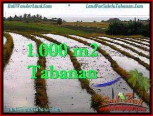 Exotic PROPERTY 800 m2 LAND SALE IN TABANAN BALI TJTB260