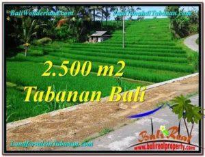 Beautiful PROPERTY LAND FOR SALE IN Tabanan Penebel TJTB305