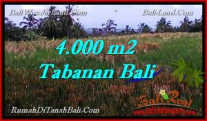 Magnificent 4,000 m2 LAND FOR SALE IN TABANAN BALI TJTB288