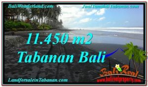 Exotic PROPERTY 11,450 m2 LAND SALE IN TABANAN BALI TJTB291