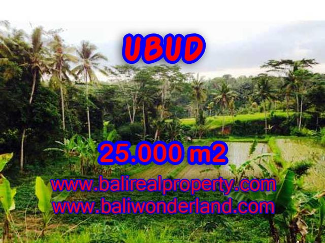 Land for sale in Ubud, Stunning view in Central Ubud Bali – TJUB350