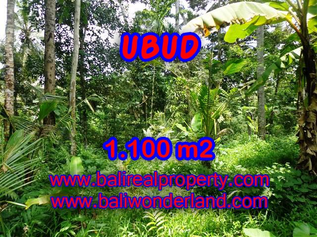 Beautiful Property for sale in Bali, land for sale in Ubud  – TJUB378
