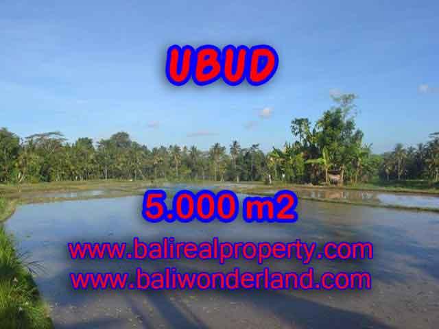 Land for sale in Bali, amazing view in Ubud Payangan – TJUB413
