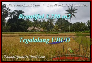 Beautiful PROPERTY 3,280 m2 LAND FOR SALE IN Ubud Tegalalang TJUB463