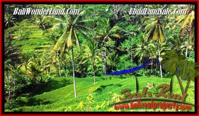 FOR SALE Exotic PROPERTY LAND IN Ubud Tegalalang BALI TJUB496