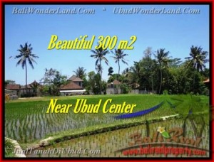 Magnificent PROPERTY LAND IN UBUD FOR SALE TJUB436