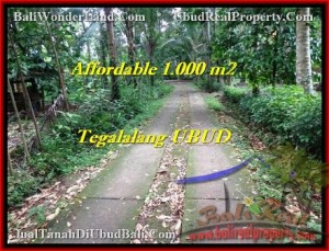 Affordable Ubud Tegalalang BALI LAND FOR SALE TJUB467