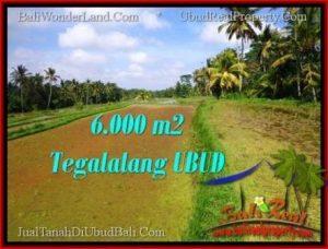 Magnificent 6,100 m2 LAND IN UBUD BALI FOR SALE TJUB552