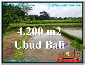 Exotic 4,200 m2 LAND IN UBUD BALI FOR SALE TJUB561
