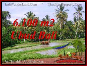 Affordable PROPERTY Ubud Tegalalang 6,100 m2 LAND FOR SALE TJUB552