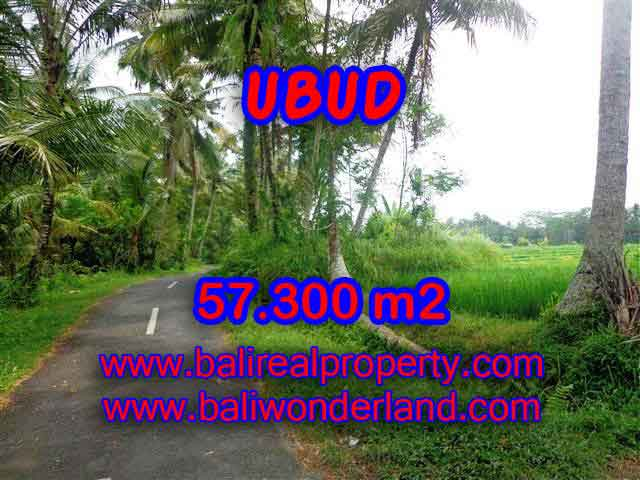 Exotic LAND FOR SALE IN UBUD Bali, beautiful rice paddy view in Ubud Tampak siring– TJUB377