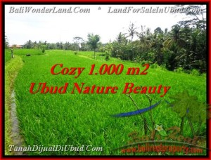 Magnificent PROPERTY LAND FOR SALE IN UBUD TJUB478