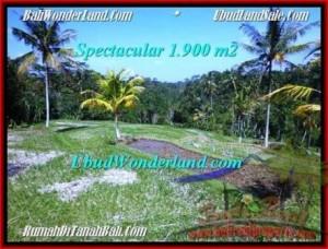 Beautiful PROPERTY LAND SALE IN UBUD TJUB505