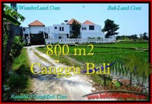 Affordable PROPERTY 800 m2 LAND SALE IN CANGGU TJCG194