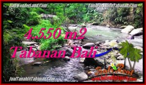 Magnificent 4,550 m2 LAND IN TABANAN BALI FOR SALE TJTB284