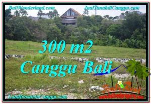Affordable 300 m2 LAND IN CANGGU FOR SALE TJCG205