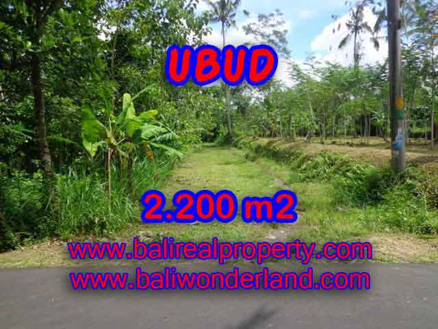 Astounding Property in Bali for sale, Garden view land in Ubud Bali – TJUB408