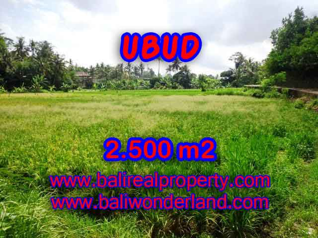 Exceptional Property in Bali, land for sale in Ubud Bali – TJUB418