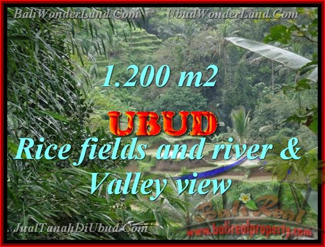 Land for sale in Ubud Bali, Unbelievable view in Ubud Tegalalang – TJUB420
