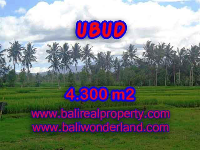 Land for sale in Ubud Bali, Great view in Ubud Center – TJUB370