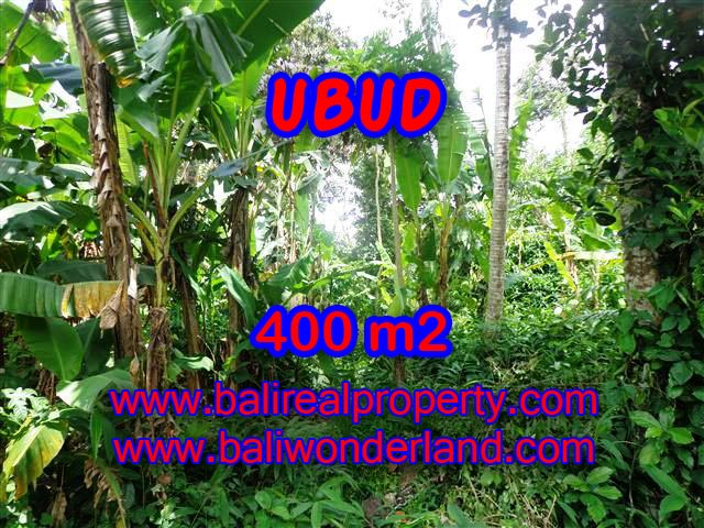 Land for sale in Ubud, Stunning view in Ubud Center Bali – TJUB371