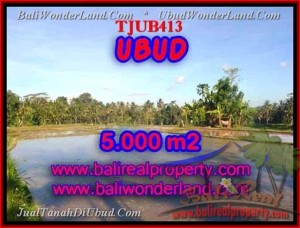 Affordable 5,000 m2 LAND IN UBUD FOR SALE TJUB413