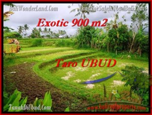 LAND FOR SALE IN Ubud Tegalalang BALI TJUB464