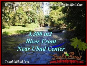 Beautiful 4,315 m2 LAND FOR SALE IN UBUD BALI TJUB499